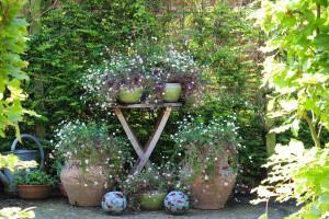 Bord med blommor