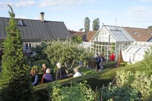 Hanssons-trädgård-överblick