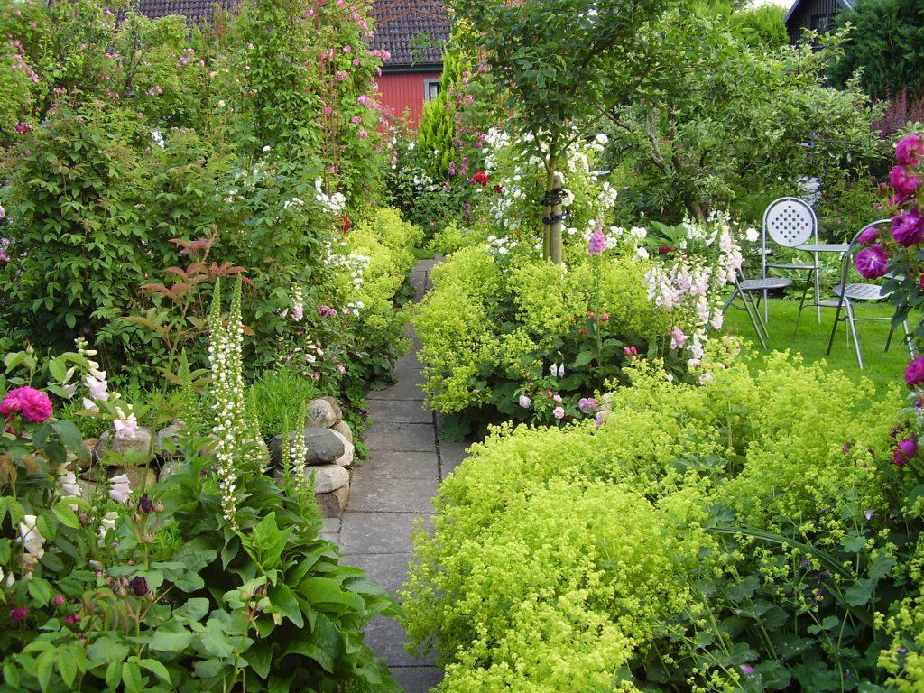 Svenssons trädgård i Onslunda